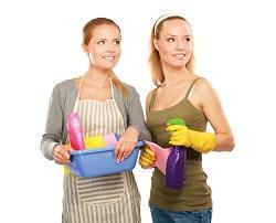 Figuring Out Which Cleaning Services You Require